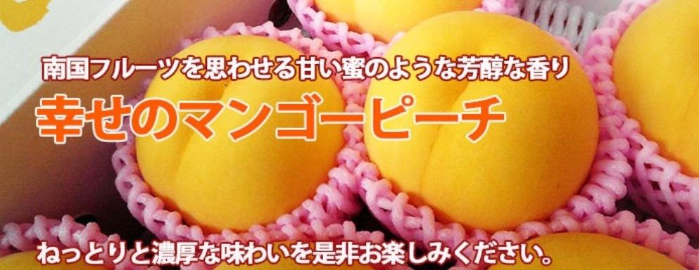 極甘のマンゴーピーチ「黄美娘(きみこ)」を通販でお取り寄せ!山形県天童市産の黄金桃!: ちょっと贅沢な贈り物
